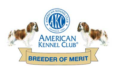 Cavalier King Charles Spaniel Breeder of Merit